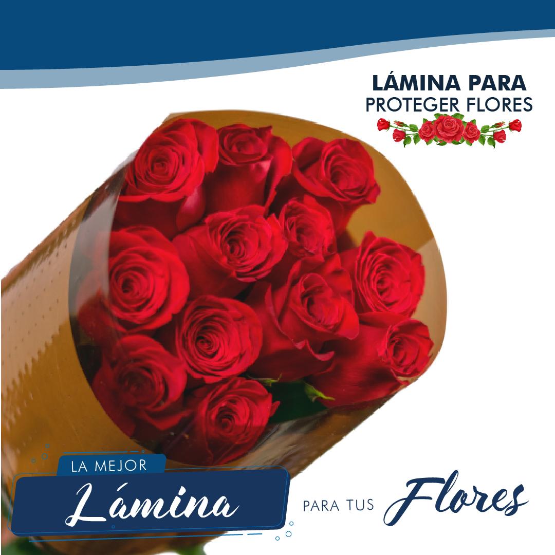 Lámina para flores blog